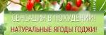 Сенсация в Похудении - Ягоды Годжи - Мурманск